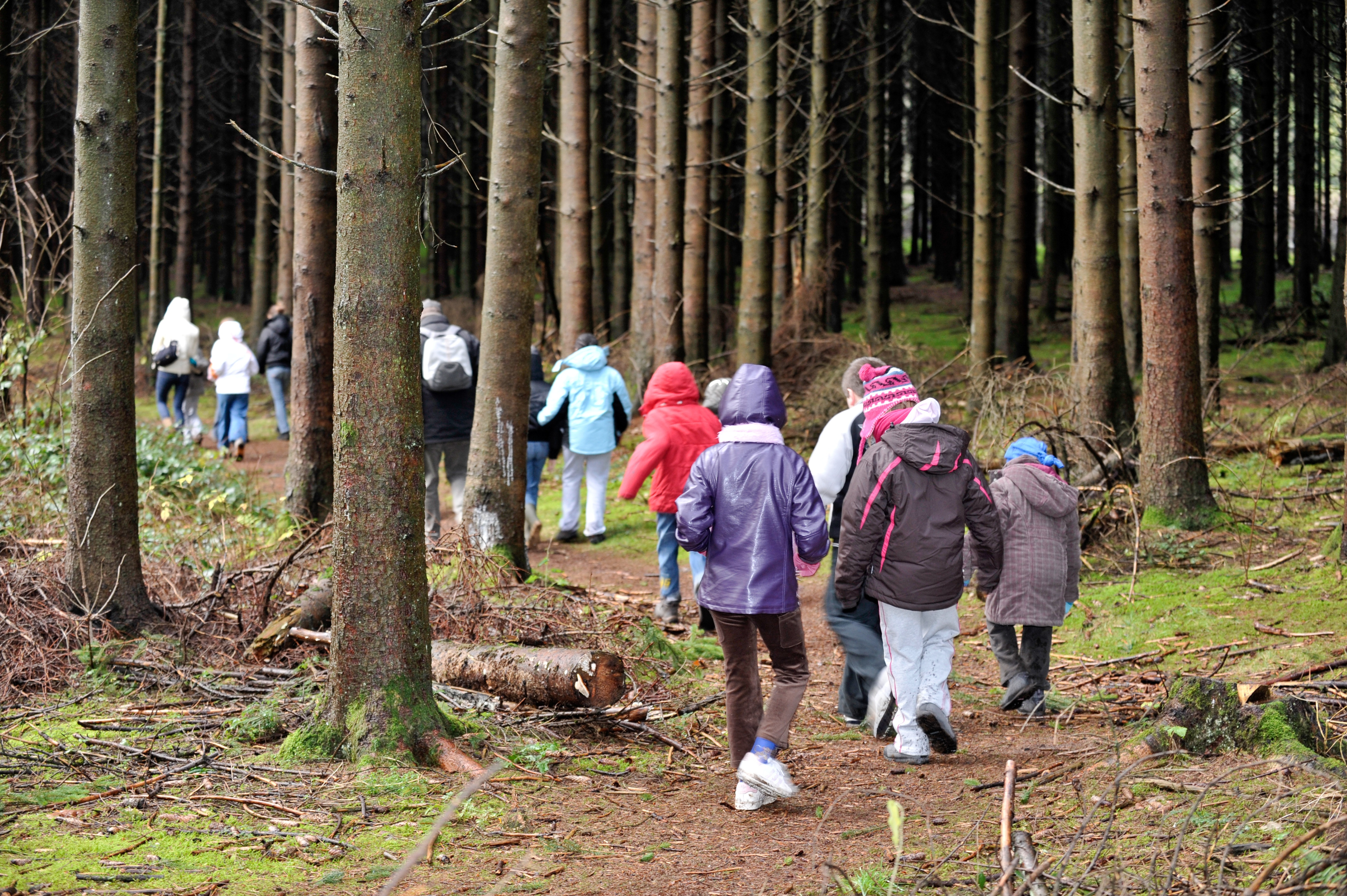 Students with jackets walking in woods